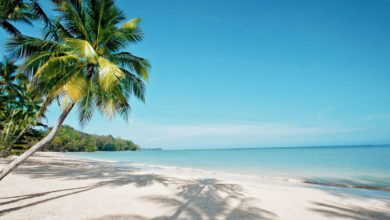 Photo of Khao Lak Offer: 20% discount on selected tours